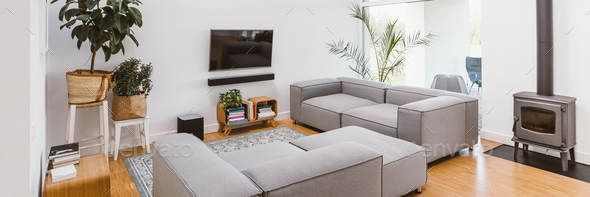 TV, pants and grey lounge furniture in spacious living room interior - Stock Photo - Images