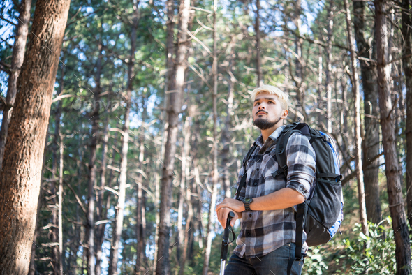 Young Man Traveler with backpack relaxing outdoor with pine forest mountains on background. - Stock Photo - Images