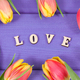 Word love and tulips for Valentines Day, birthday or other different occasions - PhotoDune Item for Sale