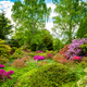 Beautiful Garden with blooming trees during spring time - PhotoDune Item for Sale
