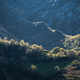 Headlands and quartzite cliffs emerge among the forests - PhotoDune Item for Sale
