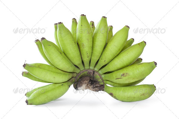 Bunch of green young bananas - Stock Photo - Images