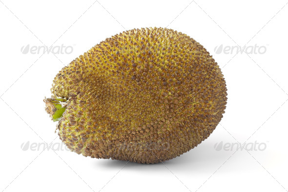 Whole Jackfruit - Stock Photo - Images