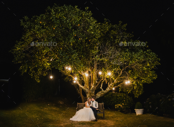 Just married couple under a tree at night - Stock Photo - Images
