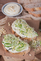 Healthy Vegetarian Bruschettas with Micro Greens, Hummus, Cucumbers and Pine Nuts - PhotoDune Item for Sale