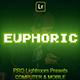 Euphoric Lightroom Preset