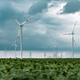 Green energy concept with wind turbines in field - PhotoDune Item for Sale