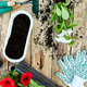 Petunia flowers and gardening tools on wooden background. - PhotoDune Item for Sale