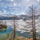 Thaw in the Engadine valley - PhotoDune Item for Sale