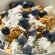 Healthy Homemade Ricotta Cheese Yogurt Bowl - PhotoDune Item for Sale