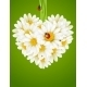 Floral love card (camomile heart) - GraphicRiver Item for Sale