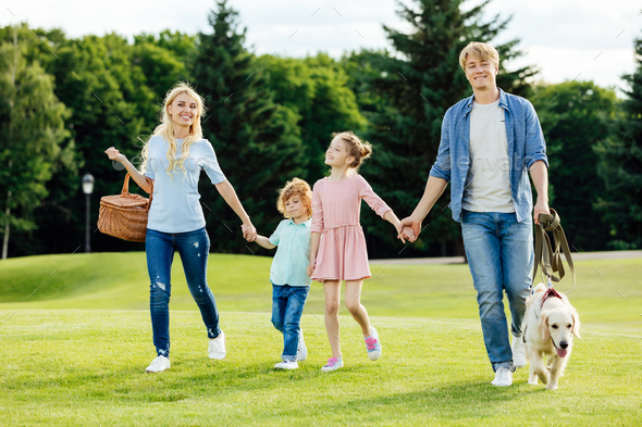 happy young family holding hands while walking with pet in park - Stock Photo - Images
