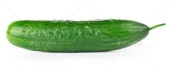 Fresh cucumber close-up isolated on white background. - Stock Photo - Images