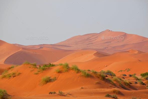 Sand desert in Namib - Stock Photo - Images