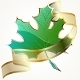 Shiny Green Leaf With Transparent Banner - GraphicRiver Item for Sale