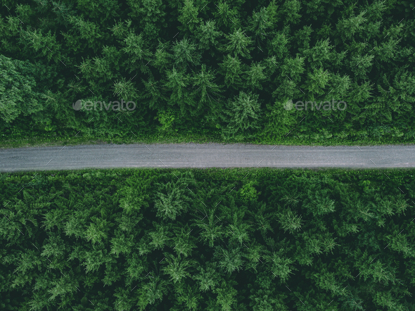 Aerial view of country road through green summer forest in Finland - Stock Photo - Images