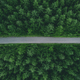 Aerial view of country road through green summer forest in Finland - PhotoDune Item for Sale
