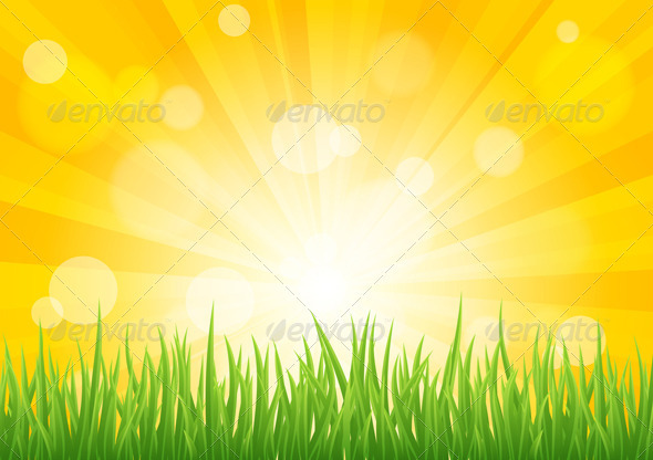 Bright vector sun effect with green grass field  - Backgrounds Decorative