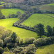 Green meadows delimited by living hedges - PhotoDune Item for Sale