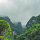 Blooming green tree among Zhanjiajie mountain scenery - PhotoDune Item for Sale