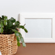 Front view of white poster frame mockup with  plant in a pot - PhotoDune Item for Sale