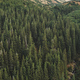 Aerial nobody nature landscape. Hike path at mountain forest on hill. Pine tree at green grass range - PhotoDune Item for Sale