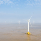 wind farm on coastal mudflat wetland - PhotoDune Item for Sale