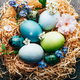 Homemade naturally dyed eggs in pastel colors - PhotoDune Item for Sale