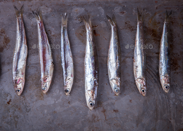 Anchovy Fresh Marine Fish.Appetizer - Stock Photo - Images