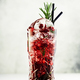 Cranberry cocktail with ice, rosemary and berries in highball glass, gray background - PhotoDune Item for Sale