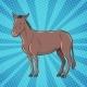 Donkey is a Farm Animal