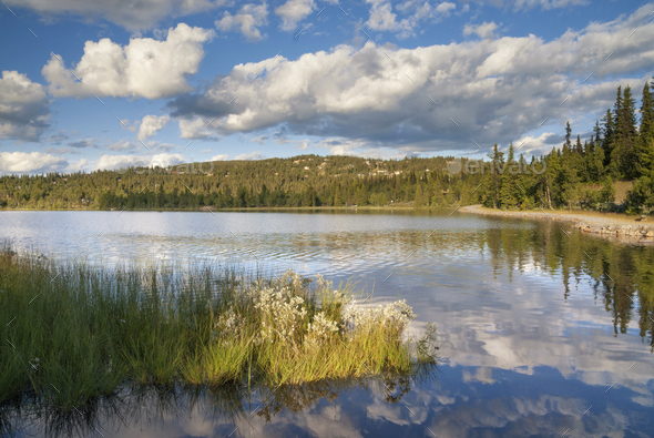 Lake in Valdres - Stock Photo - Images