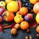 Fresh seasonal,autumn fruit - PhotoDune Item for Sale