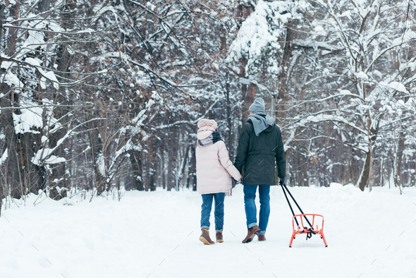 back view of couple with sledge holding hands while walking in snowy park - Stock Photo - Images