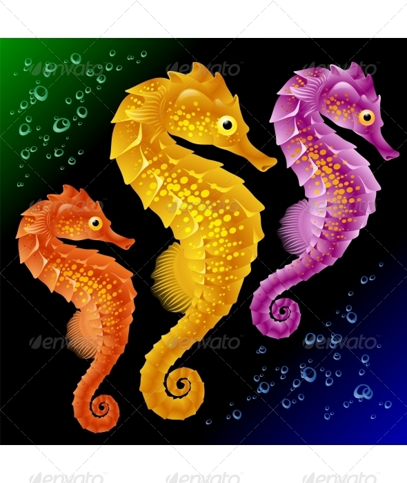 Vector Seahorses - Animals Characters