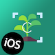 High Accuracy Plant Identifier- iOS App That Uses Machine Learning Model To Identify All Plants