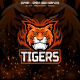 Tiger Head E-sport and Sport Logo Template