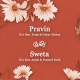 Wedding Invitation - VideoHive Item for Sale