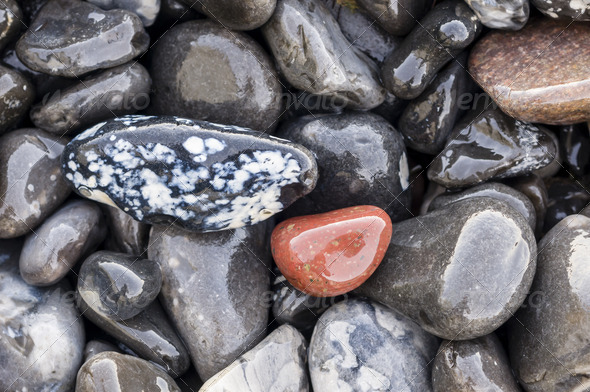 Pebbles on the beach - Stock Photo - Images
