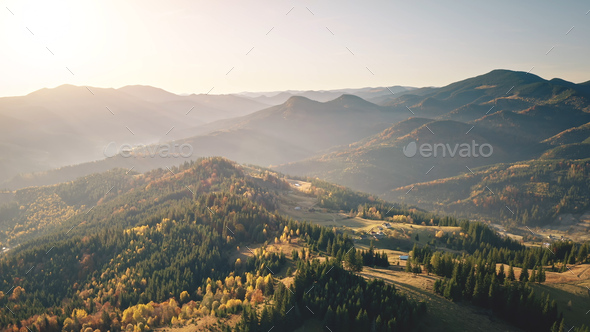 Fog sunrise at mountain village aerial. Autumn nobody nature landscape. Green spruce, leaf forest - Stock Photo - Images