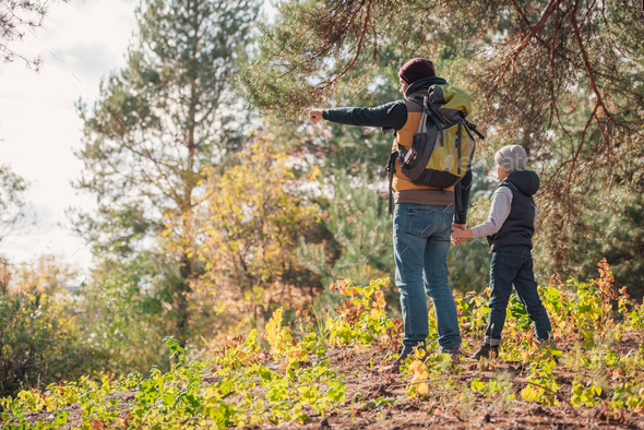 back view of father and son pointing with finger while hiking together - Stock Photo - Images