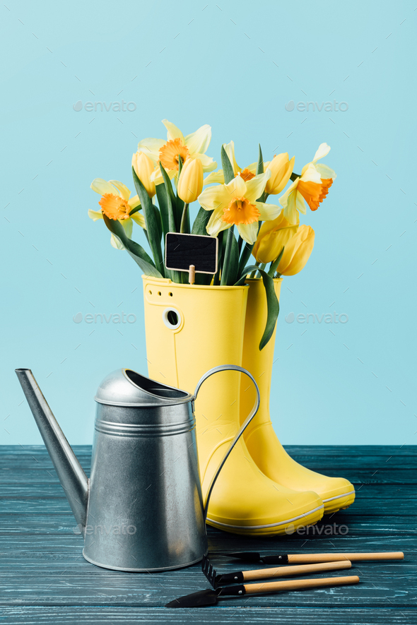 close up view of yellow bouquet of flowers and empty blackboard in rubber boots with watering can - Stock Photo - Images
