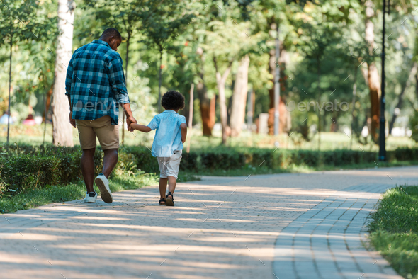 back view of curly kid holding hands with african american father and walking in park - Stock Photo - Images