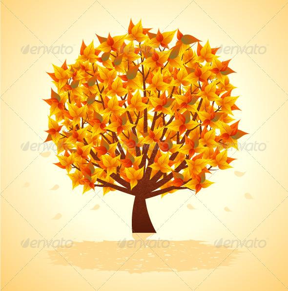 Autumn Tree - Seasons Nature