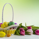 Happy Easter elegant background with painted eggs in yellow basket - PhotoDune Item for Sale