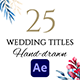 Watercolor Flower Wedding Titles - VideoHive Item for Sale