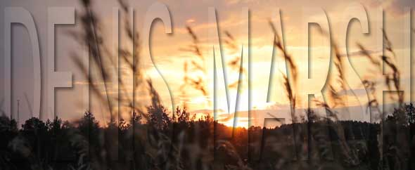 Denis marsh videohive logo 0