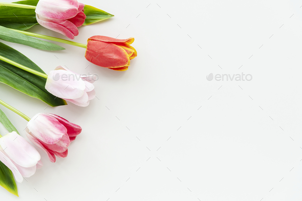 A bouquet of flowers with copy space - Stock Photo - Images