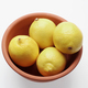 Bowl of Lemons - PhotoDune Item for Sale