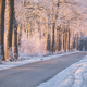 red sunrise light durinf winter morning - PhotoDune Item for Sale
